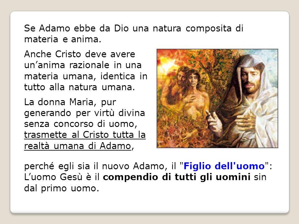 Se Adamo ebbe da Dio una natura composita di materia e anima.