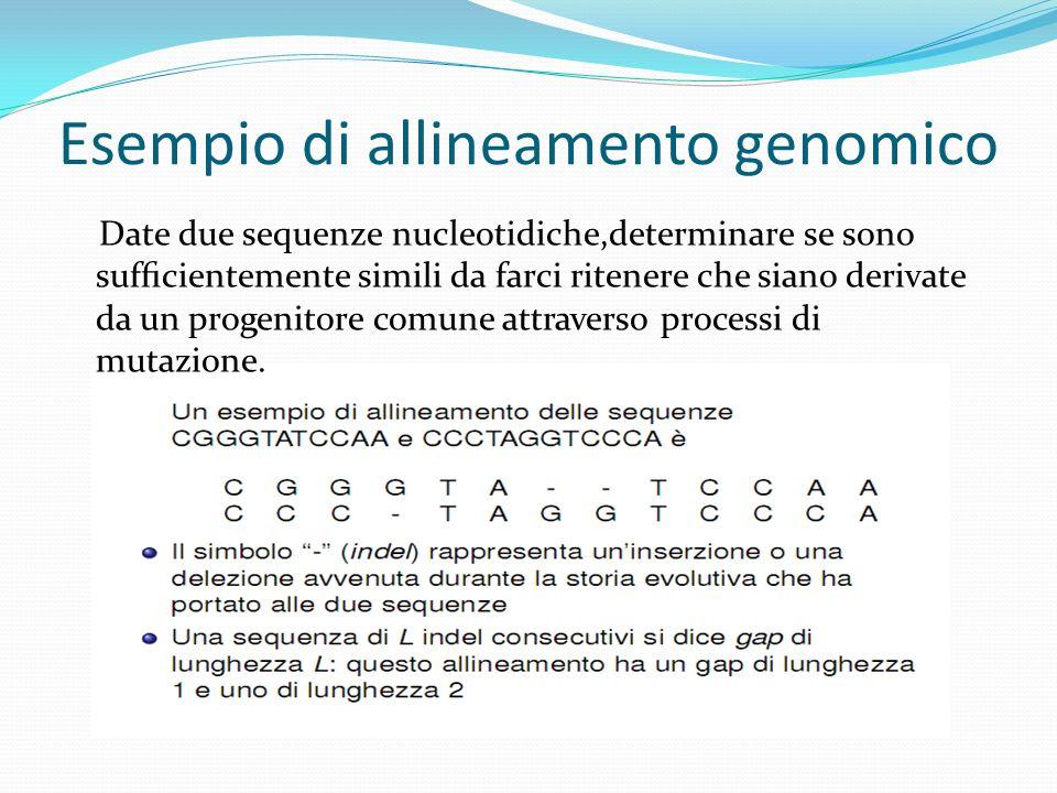 Esempio di allineamento genomico