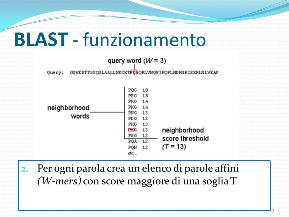 BLAST - funzionamento Per ogni parola crea un elenco di parole affini (W-mers) con score maggiore di una soglia T.