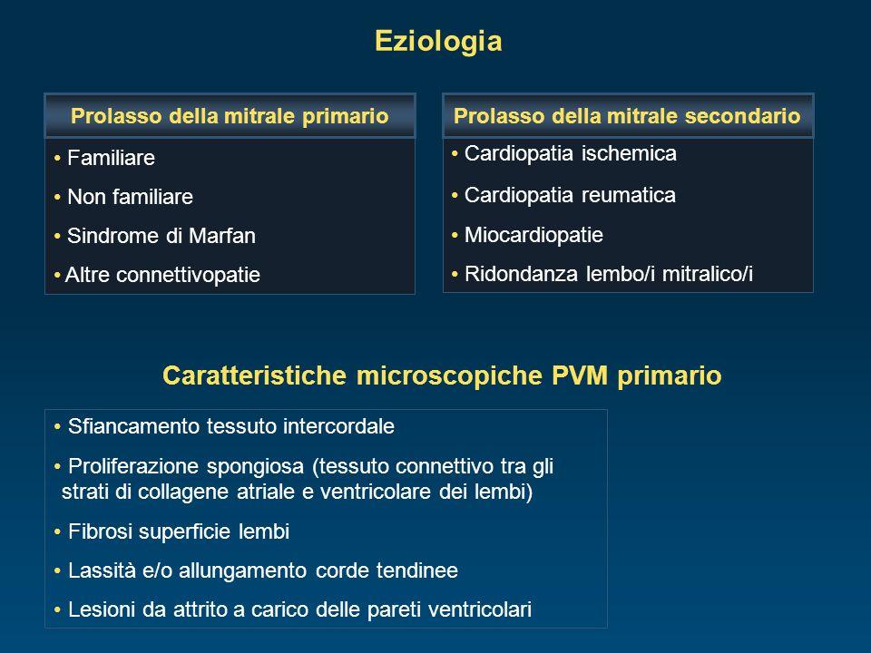 Eziologia Caratteristiche microscopiche PVM primario