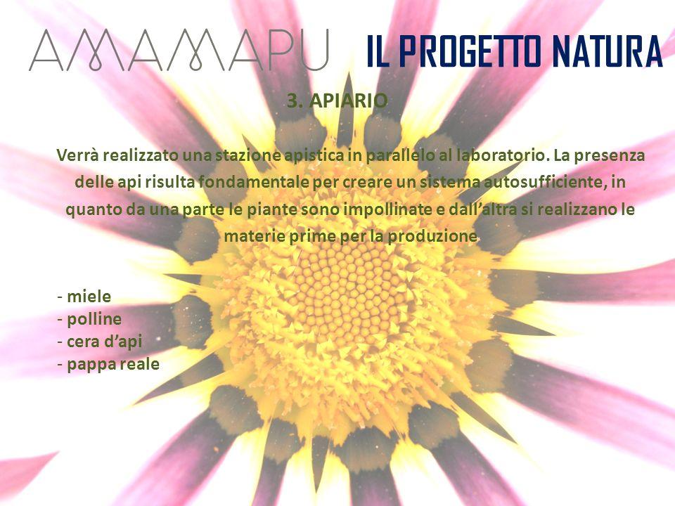 IL PROGETTO NATURA 3. APIARIO