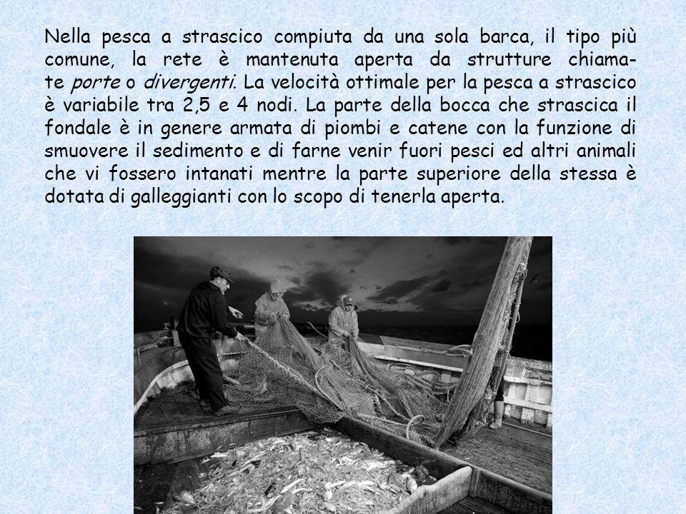 Nella pesca a strascico compiuta da una sola barca, il tipo più comune, la rete è mantenuta aperta da strutture chiama-te porte o divergenti.