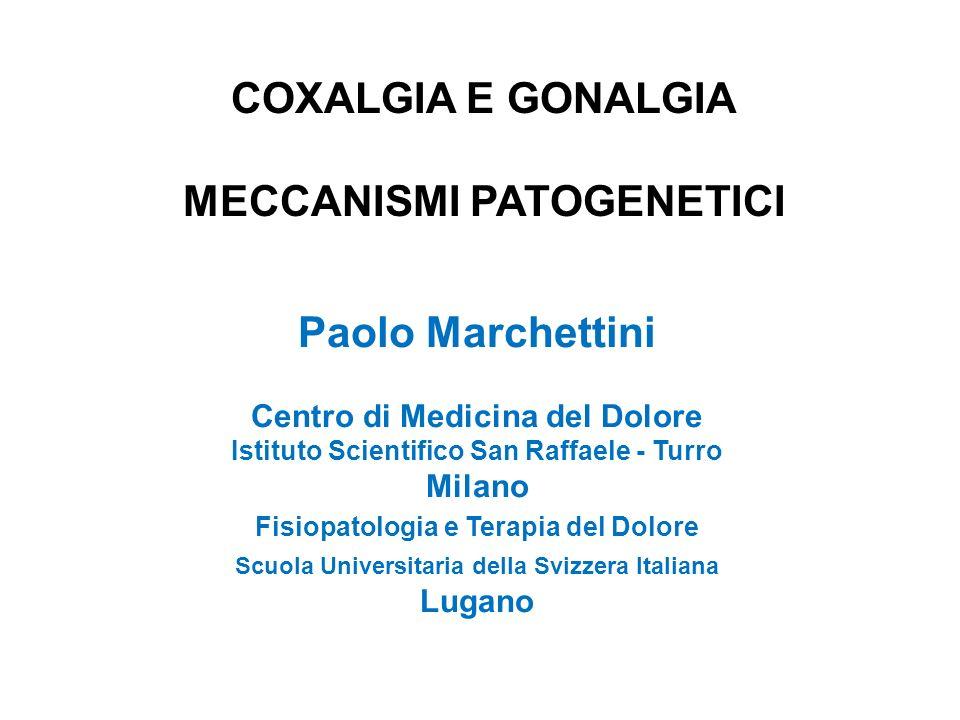 COXALGIA E GONALGIA MECCANISMI PATOGENETICI Paolo Marchettini