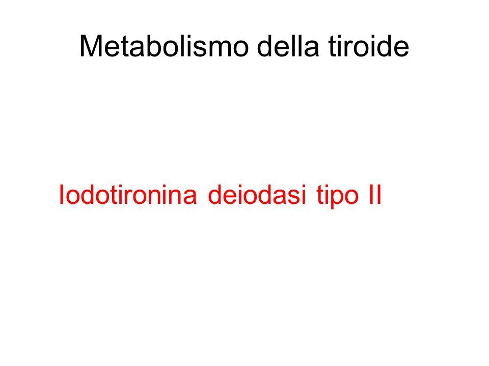 Metabolismo della tiroide