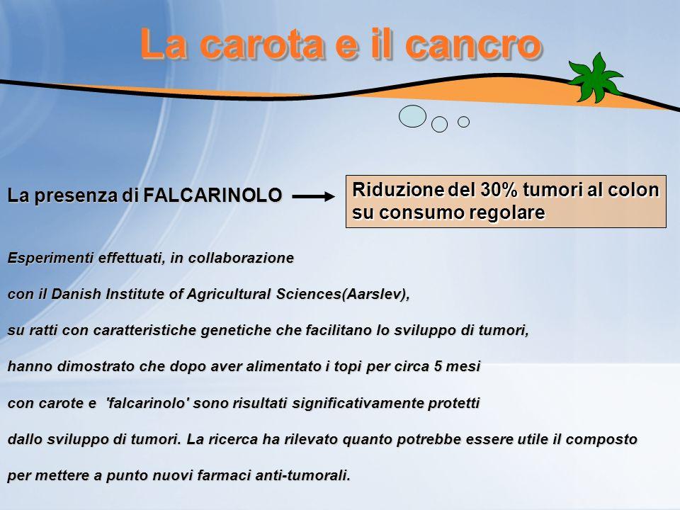 La carota e il cancro Riduzione del 30% tumori al colon