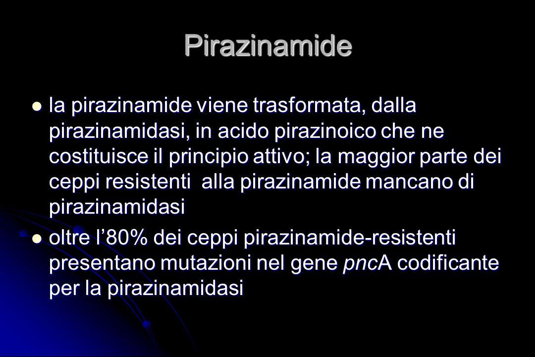 Pirazinamide