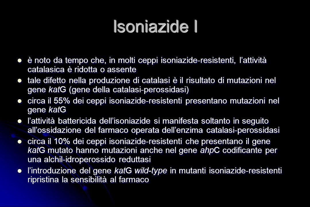 Isoniazide I è noto da tempo che, in molti ceppi isoniazide-resistenti, l'attività catalasica è ridotta o assente.