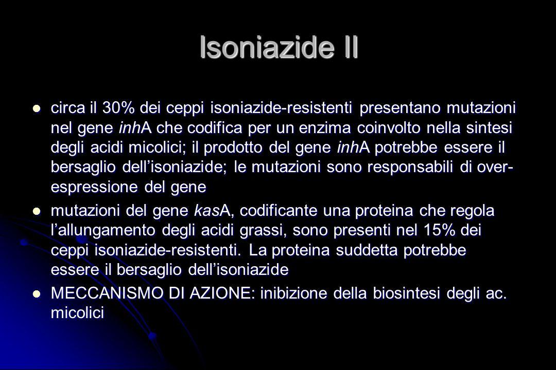 Isoniazide II