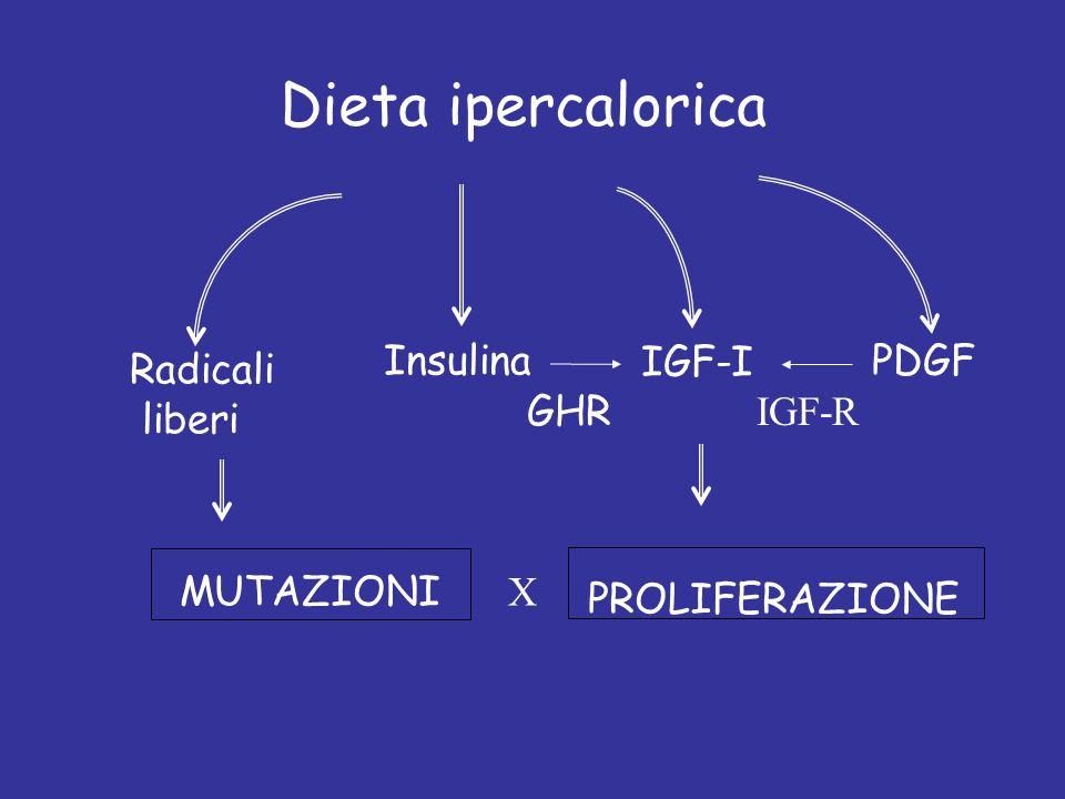 Dieta ipercalorica Insulina IGF-I PDGF Radicali liberi GHR IGF-R