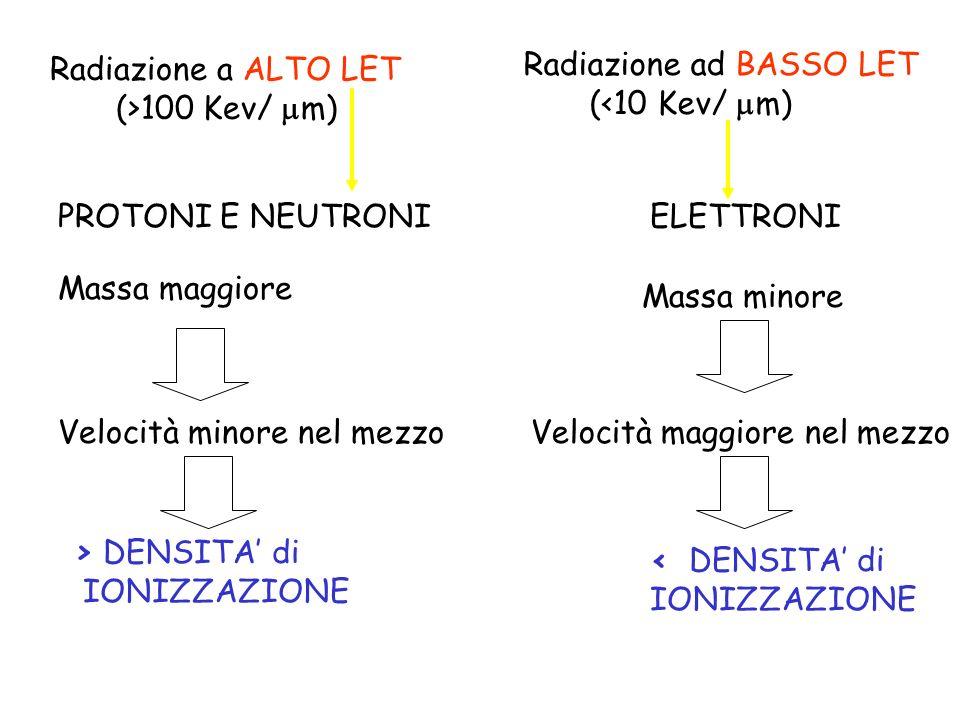 Radiazione a ALTO LET (>100 Kev/ m) Radiazione ad BASSO LET. (<10 Kev/ m) PROTONI E NEUTRONI. ELETTRONI.