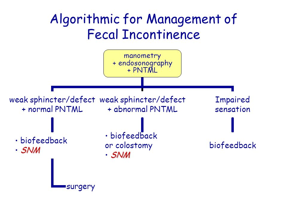 Algorithmic for Management of Fecal Incontinence