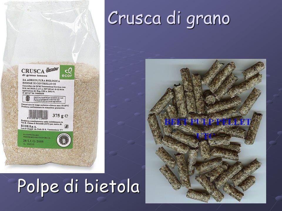 Crusca di grano Polpe di bietola