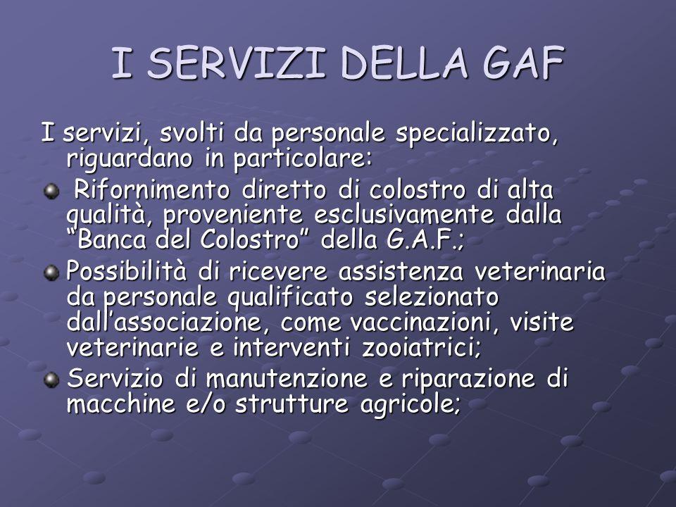 I SERVIZI DELLA GAF I servizi, svolti da personale specializzato, riguardano in particolare: