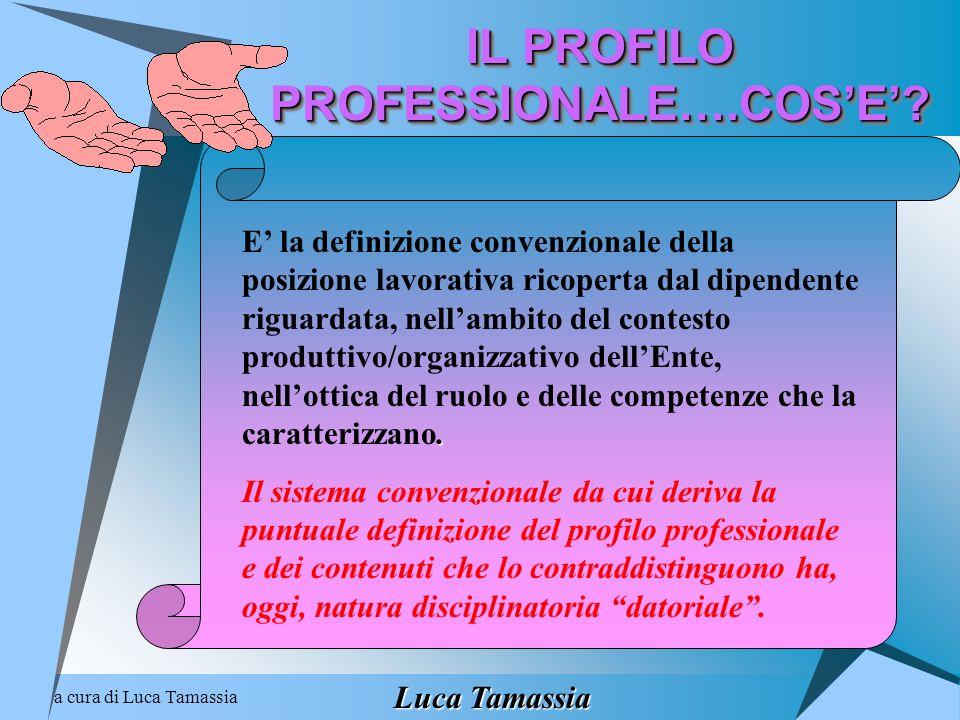 IL PROFILO PROFESSIONALE….COS'E'