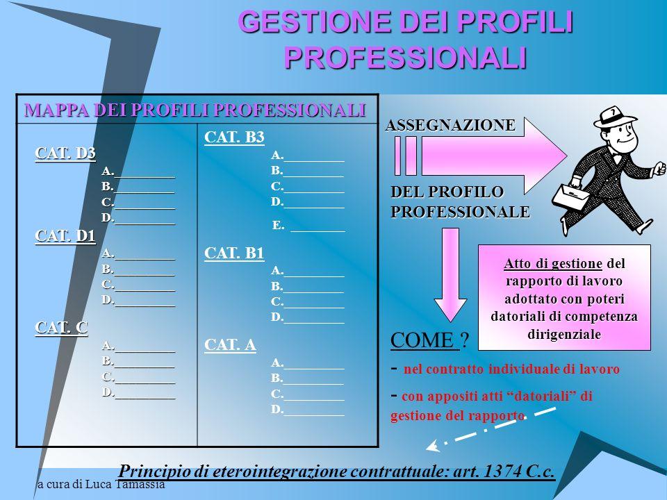GESTIONE DEI PROFILI PROFESSIONALI