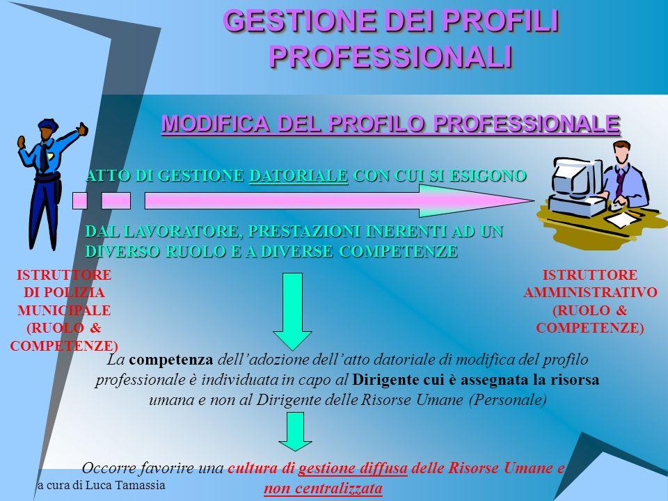 GESTIONE DEI PROFILI PROFESSIONALI MODIFICA DEL PROFILO PROFESSIONALE
