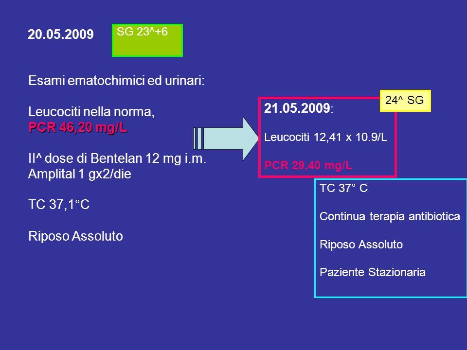 Esami ematochimici ed urinari: Leucociti nella norma, PCR 46,20 mg/L