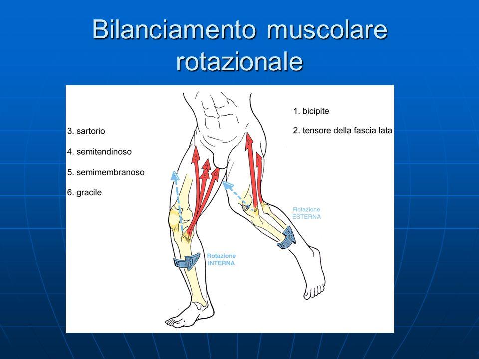 Bilanciamento muscolare rotazionale