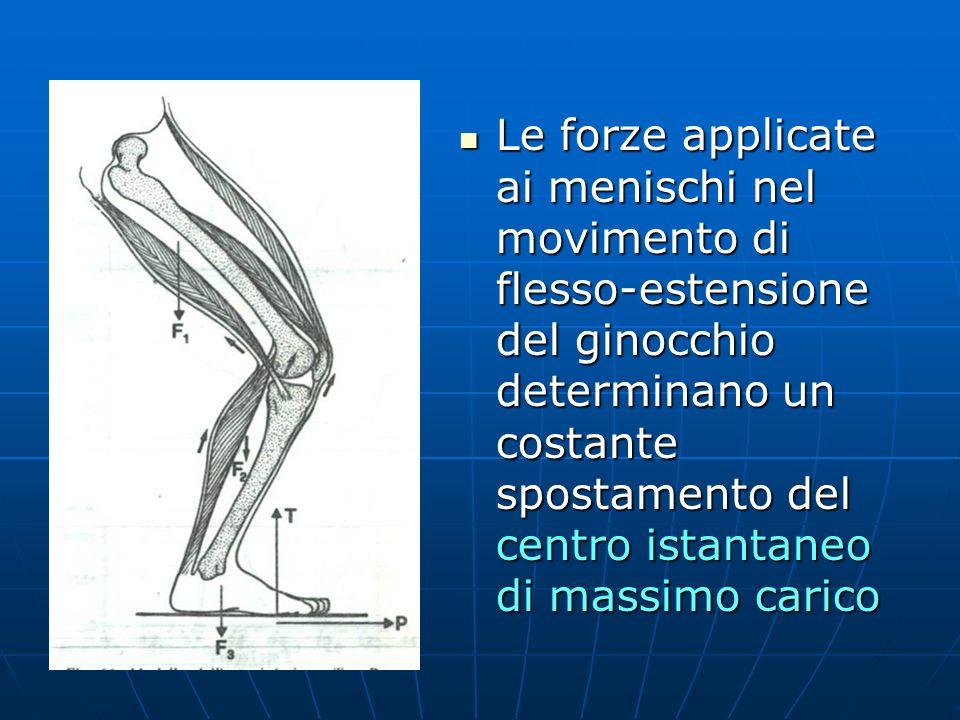 Le forze applicate ai menischi nel movimento di flesso-estensione del ginocchio determinano un costante spostamento del centro istantaneo di massimo carico