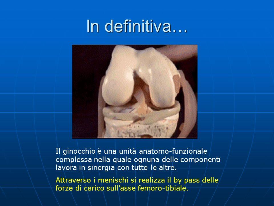 In definitiva… Il ginocchio è una unità anatomo-funzionale complessa nella quale ognuna delle componenti lavora in sinergia con tutte le altre.