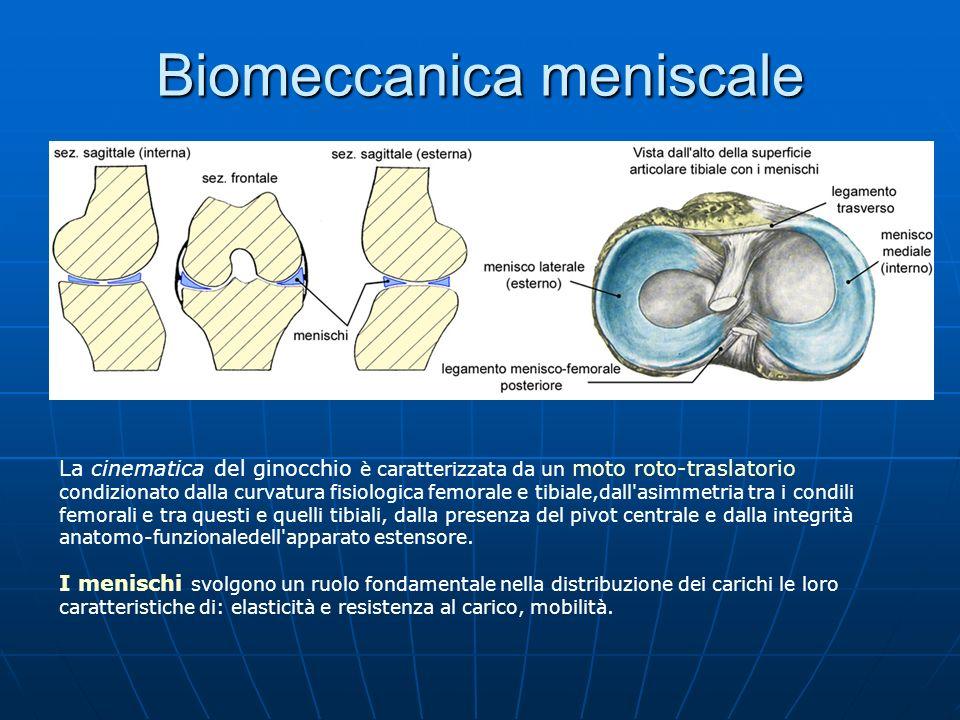 Biomeccanica meniscale