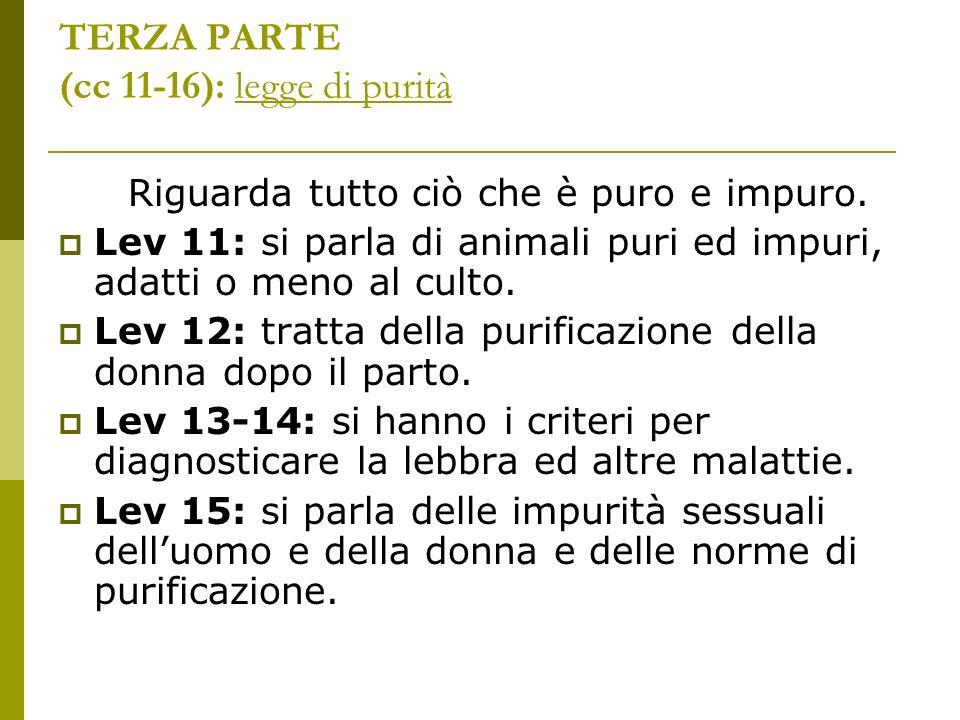 TERZA PARTE (cc 11-16): legge di purità