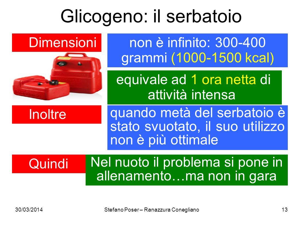 Glicogeno: il serbatoio