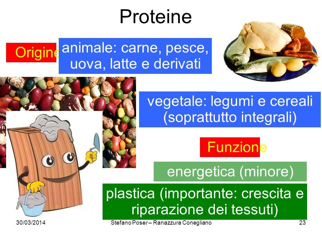 Proteine animale: carne, pesce, uova, latte e derivati Origine