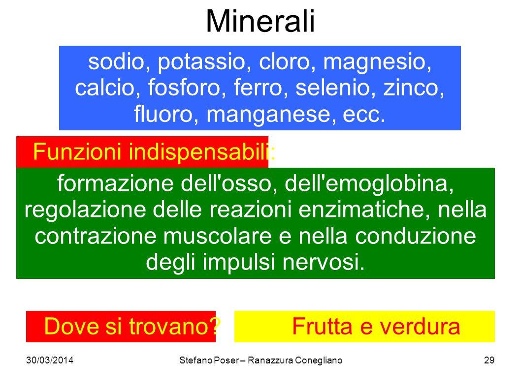 Minerali sodio, potassio, cloro, magnesio, calcio, fosforo, ferro, selenio, zinco, fluoro, manganese, ecc.