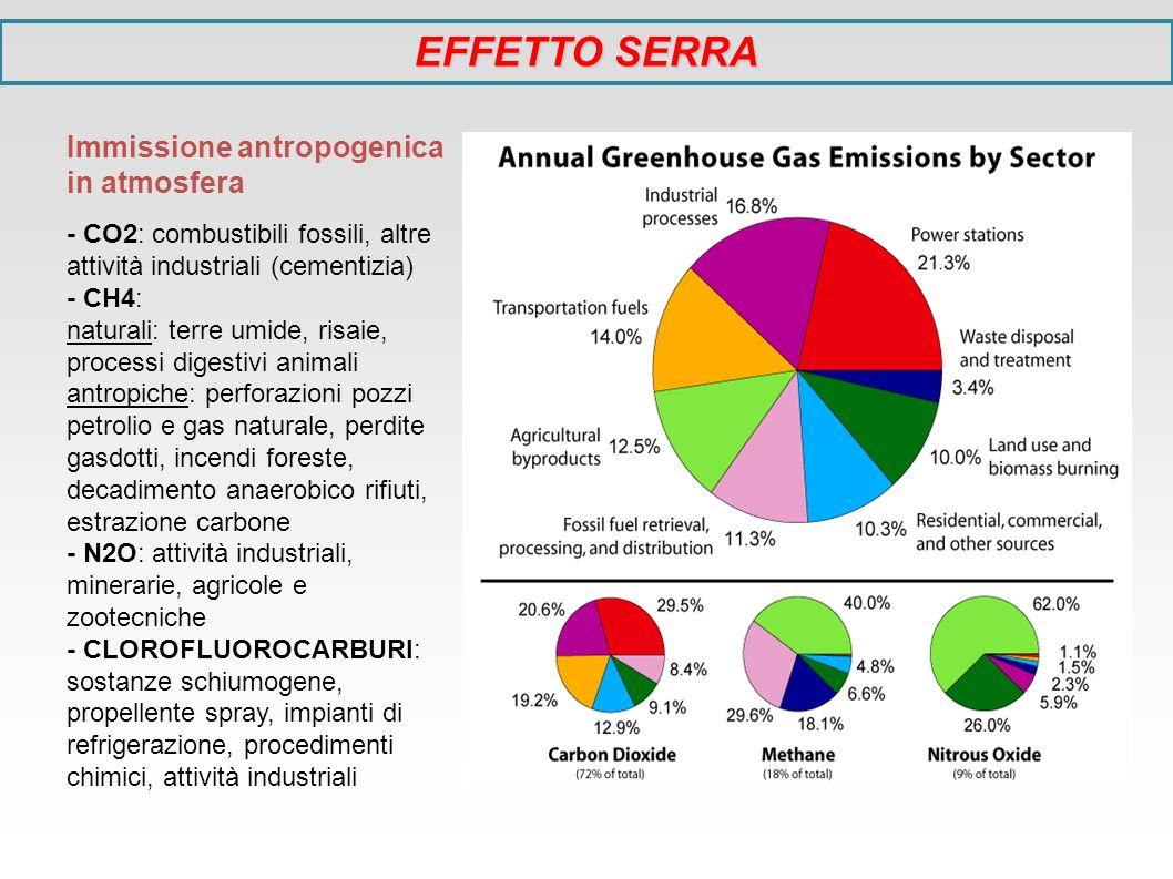 EFFETTO SERRA Immissione antropogenica in atmosfera