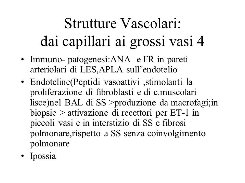Strutture Vascolari: dai capillari ai grossi vasi 4