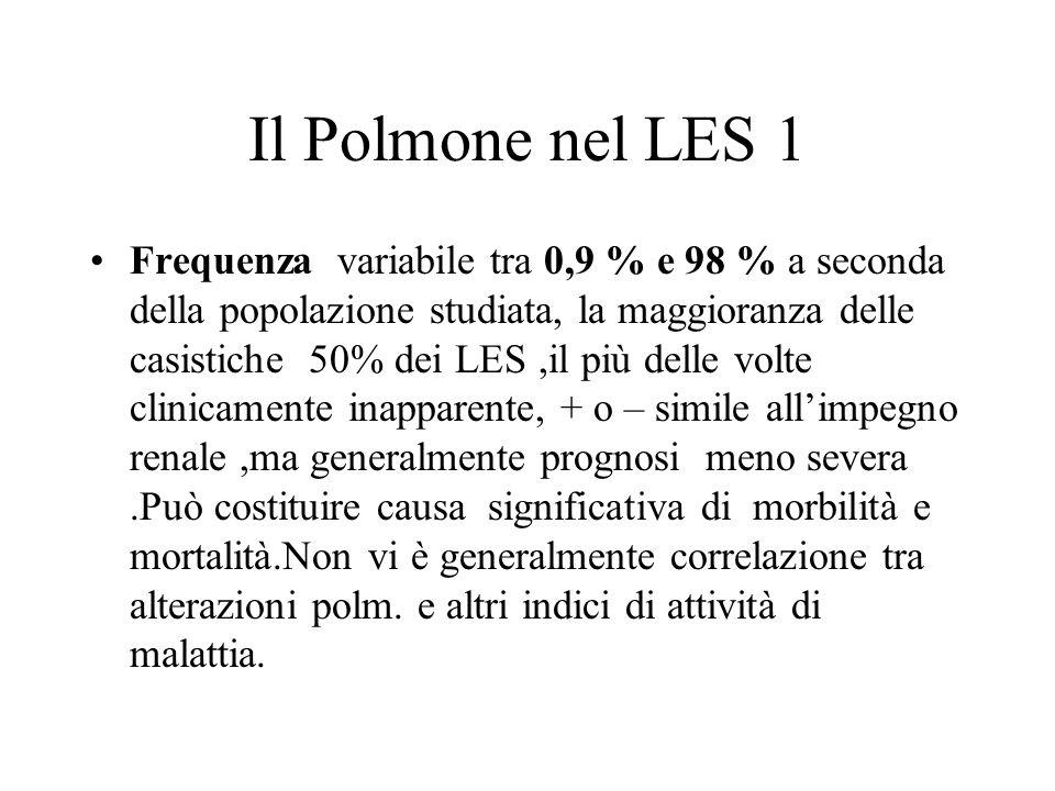 Il Polmone nel LES 1