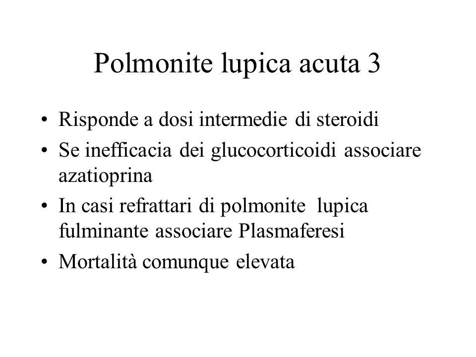 Polmonite lupica acuta 3