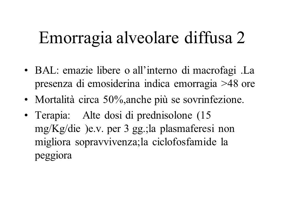 Emorragia alveolare diffusa 2