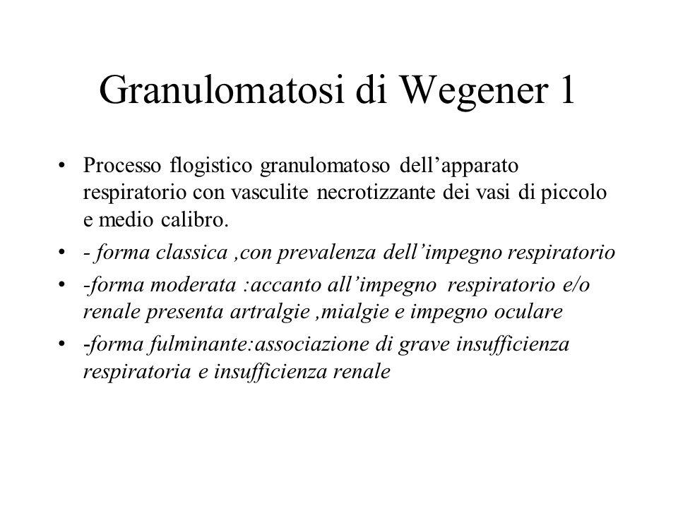 Granulomatosi di Wegener 1
