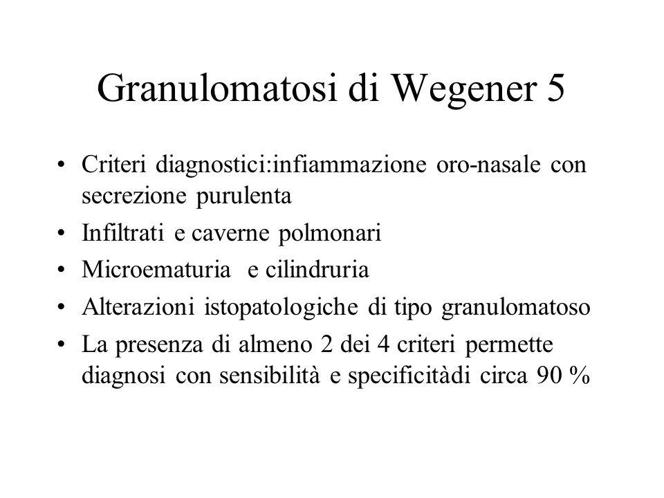 Granulomatosi di Wegener 5