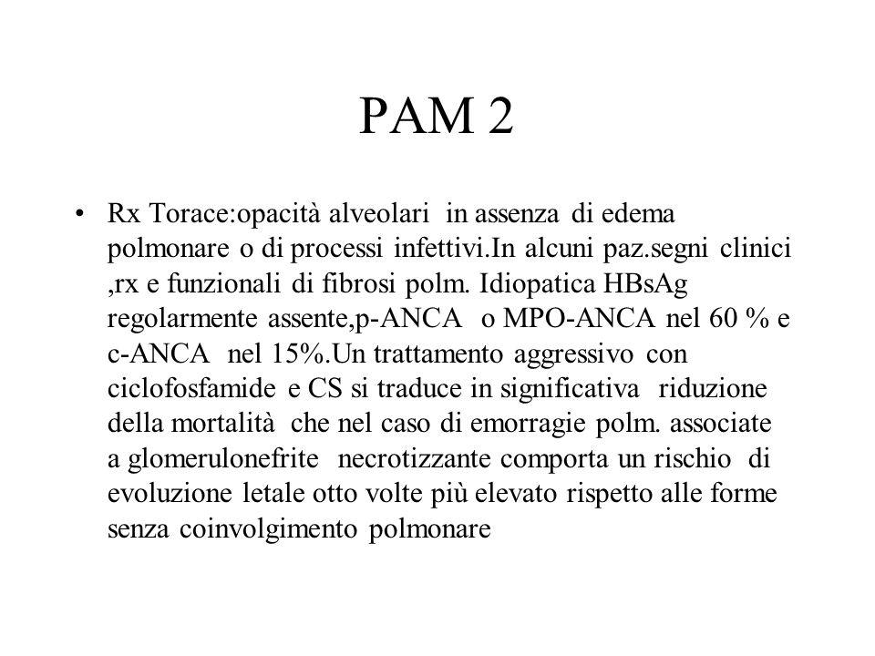 PAM 2