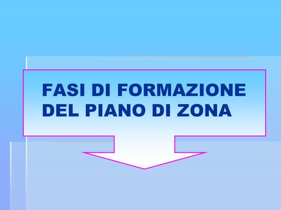 FASI DI FORMAZIONE DEL PIANO DI ZONA