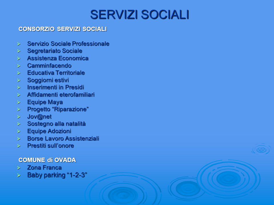 SERVIZI SOCIALI Baby parking 1-2-3 CONSORZIO SERVIZI SOCIALI
