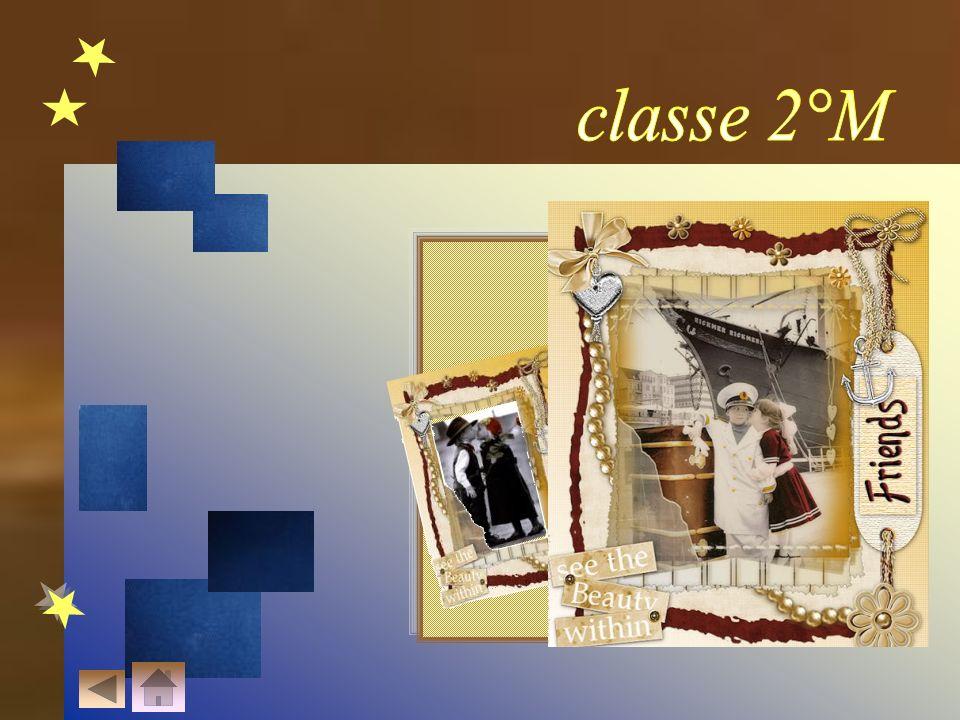 classe 2°M R-ipara A-micizie S-pezzate