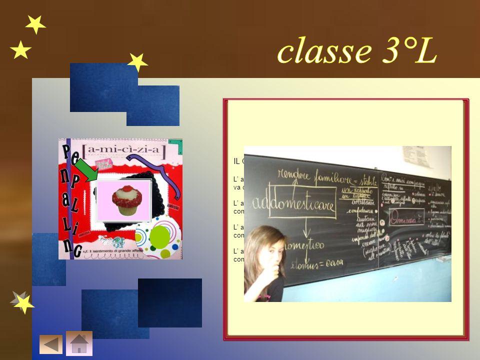 classe 3°L IL GIARDINO DELL' AMICIZIA…