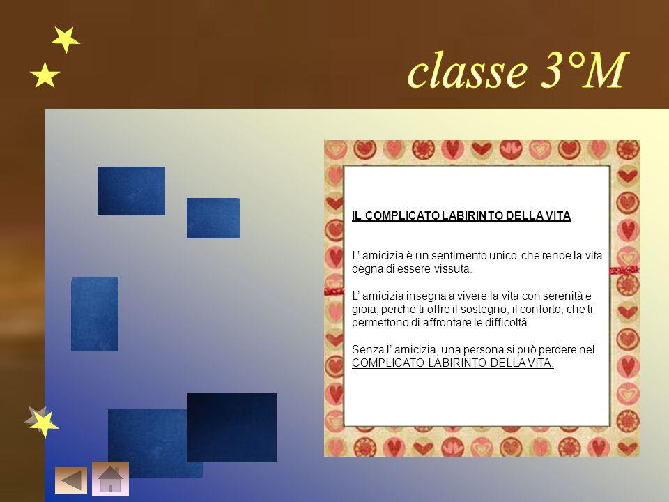 classe 3°M IL COMPLICATO LABIRINTO DELLA VITA