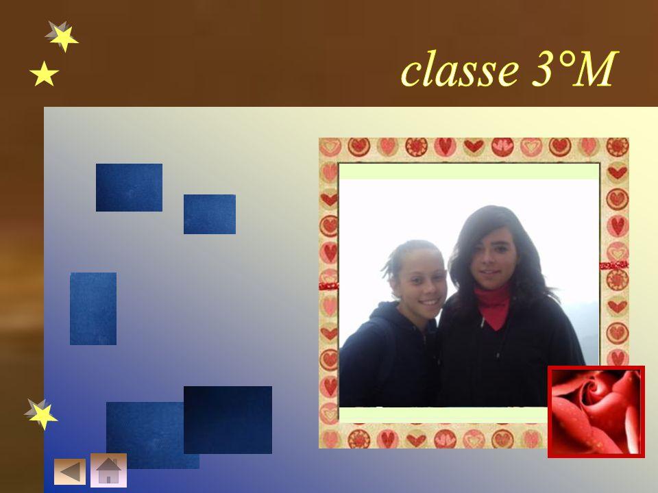 classe 3°M LA NECESSITA' DELL' AMICIZIA