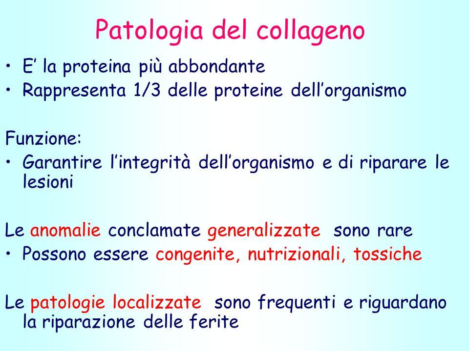 Patologia del collageno