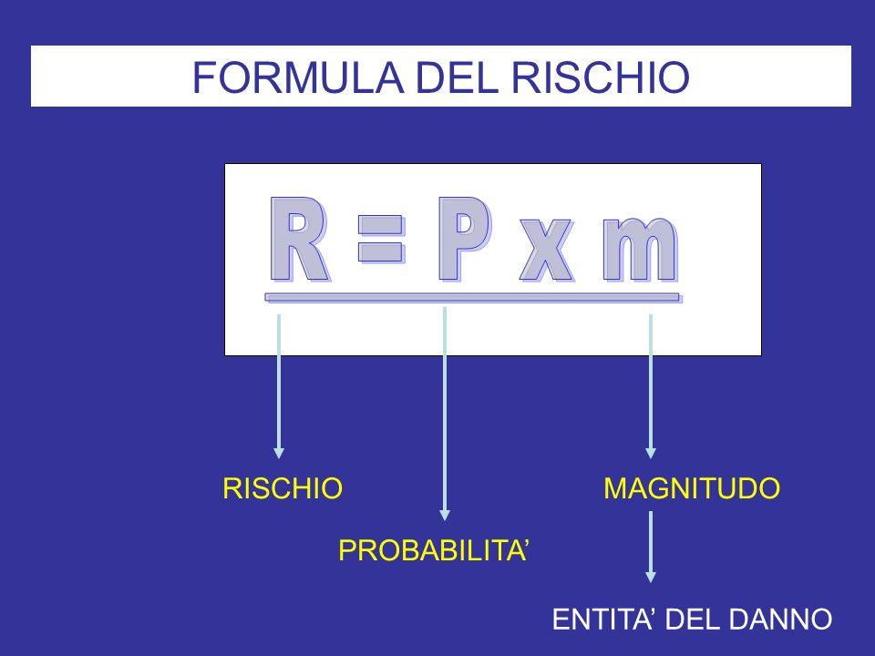FORMULA DEL RISCHIO R = P x m RISCHIO MAGNITUDO PROBABILITA'