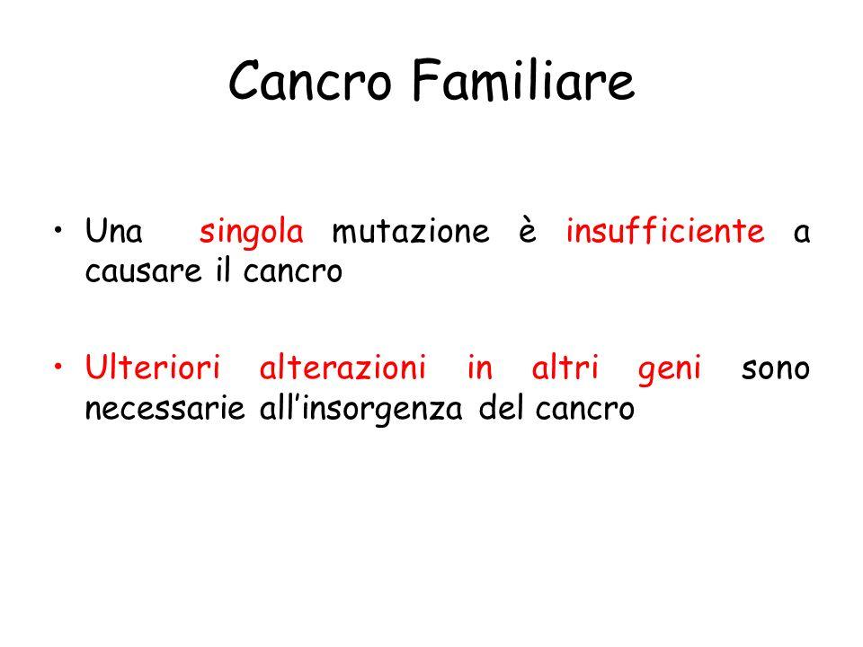 Cancro Familiare Una singola mutazione è insufficiente a causare il cancro.