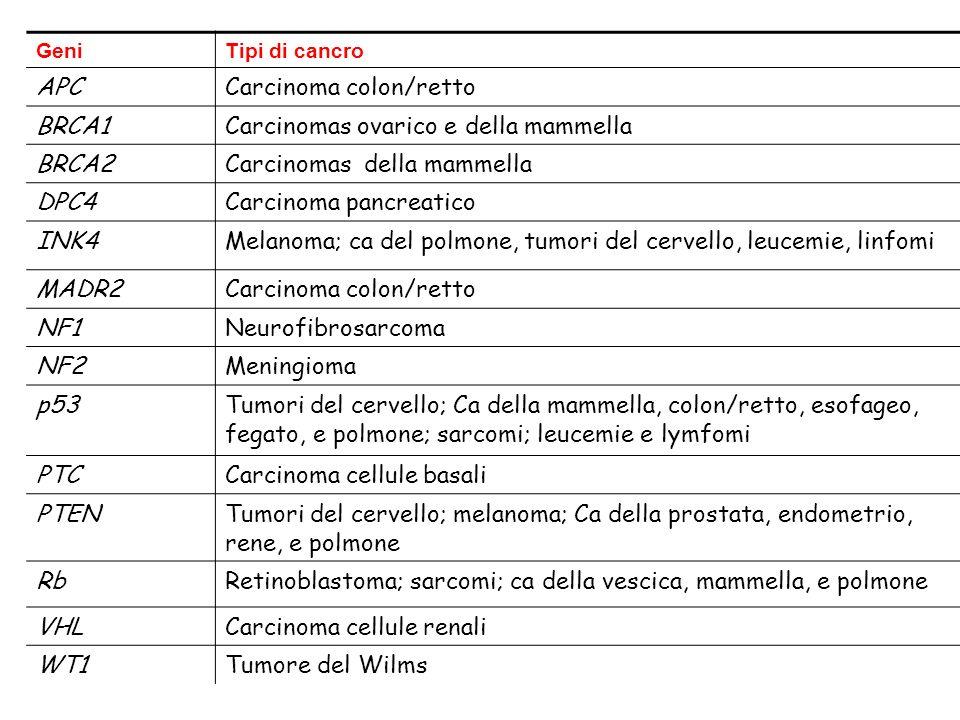Carcinoma colon/retto BRCA1 Carcinomas ovarico e della mammella BRCA2