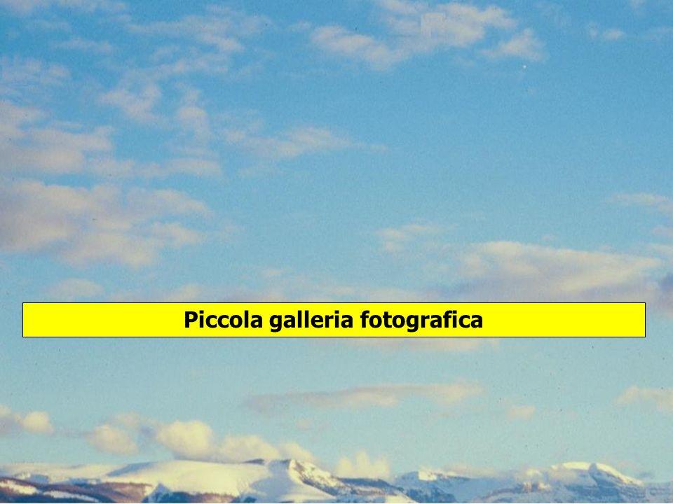 Piccola galleria fotografica