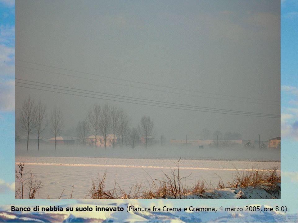 Banco di nebbia su suolo innevato (Pianura fra Crema e Cremona, 4 marzo 2005, ore 8.0)