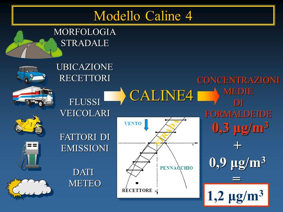 CALINE4 Modello Caline 4 0,3 μg/m3 + 0,9 μg/m3 = 1,2 μg/m3 MORFOLOGIA